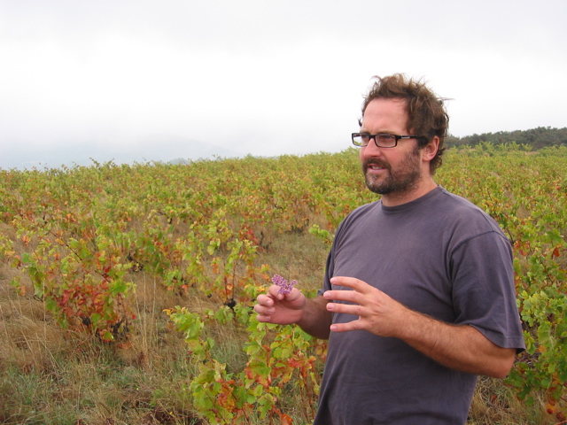 Tom Lubbe at Poude Roude vineyard
