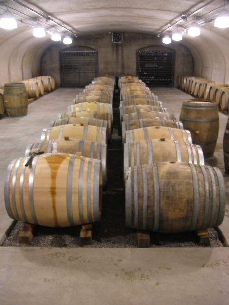 Barrels for the 2009 harvest in the cellar at Closson Chase